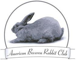 Beveren Rabbits